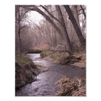 Streams Photo Print