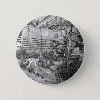street cat 6 cm round badge