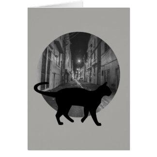 Street cat card