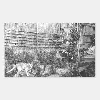 street cat rectangular sticker