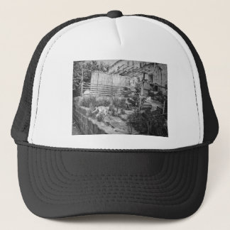 street cat trucker hat