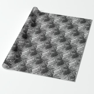 street cat wrapping paper