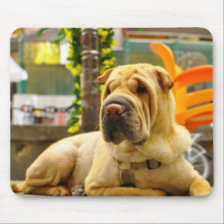 Street Dog Mouse Pad