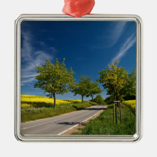 Street with trees and rape field christmas tree ornaments