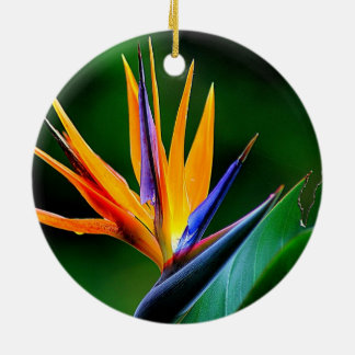 Strelitzia. Bird of paradise flower. Ceramic Ornament