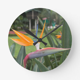 Strelitzia Bird of paradise flower / plant Round Clock