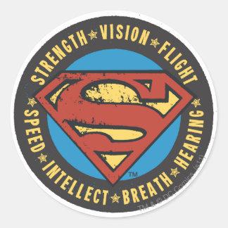 Strength, Vision, Flight Round Sticker