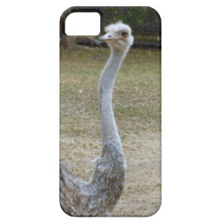 Stretch iPhone 5 Case