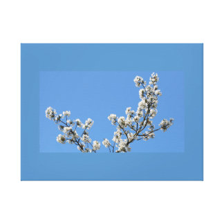 Stretched Canvas Print Cherry Blossoms