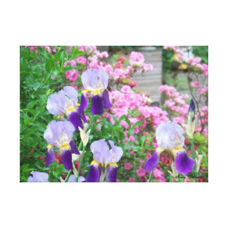 Stretched Canvas Print - Iris & Azalea - Atoka, TN