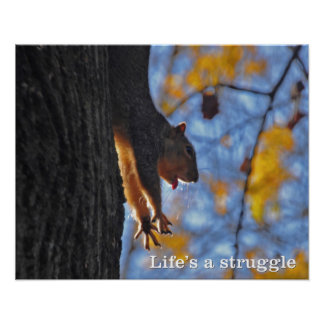Stretching Squirrel Poster