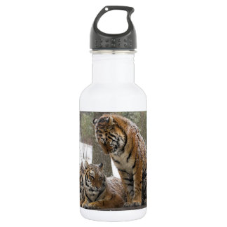 Stretching Tiger 532 Ml Water Bottle