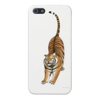 Stretching Tiger iPhone Case iPhone 5 Cover