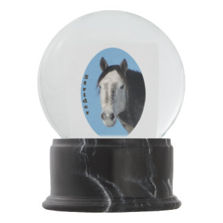 Strider of Sand Wash Basin Snow Globe