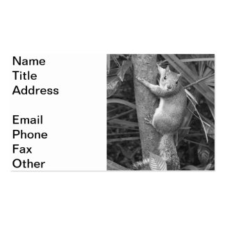 Strike a Pose 2 Pack Of Standard Business Cards