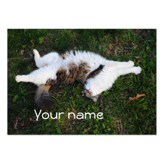 Strike A Pose Cat Business Cards