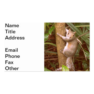 Strike a Pose Pack Of Standard Business Cards