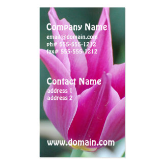 Striking Tulip Pack Of Standard Business Cards