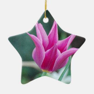 Striking Tulip Christmas Tree Ornament