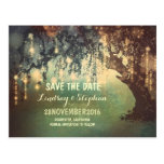 string lights tree rustic save the date postcard