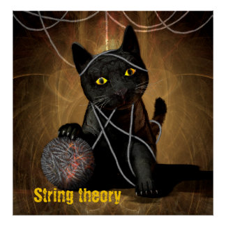 String theory cat posters