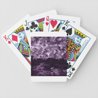 Stripe common coastal highway and cat bicycle playing cards