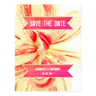 Striped Amaryllis Flower Wedding Save the Date Postcard
