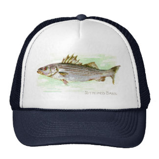 Striped Bass Cap