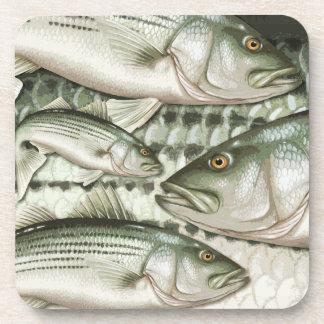 Striped Bass (Striper) Coasters
