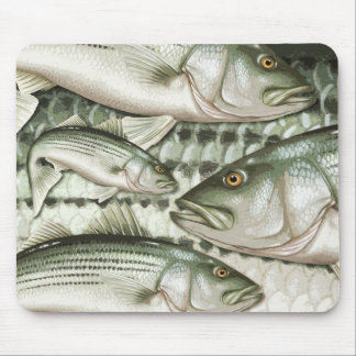 Striped Bass (Striper) Mouse Pad