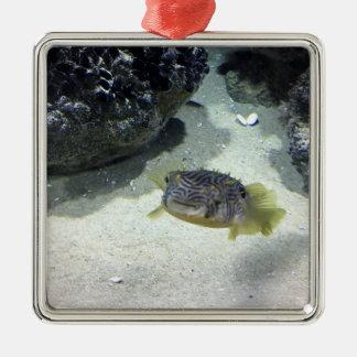Striped Burrfish Metal Ornament