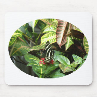 Striped Butterfly Mouse Pad