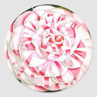 Striped candy cane camellia round sticker