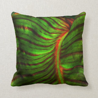 Striped Canna Leaf Accent Pillow