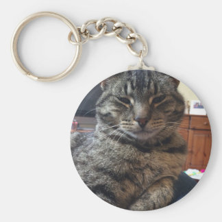 Striped cat basic round button key ring