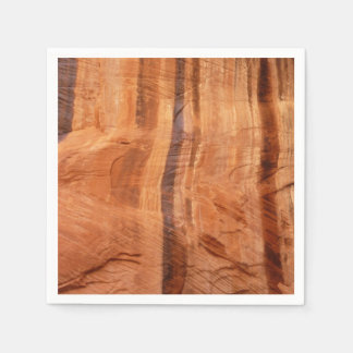 Striped Rock of Double Arch Alcove II Zion Park Paper Napkins