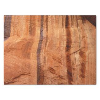 Striped Rock of Double Arch Alcove II Zion Park Tissue Paper