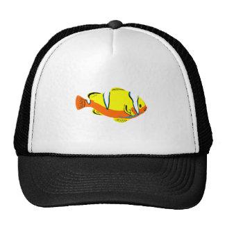 Striped Tropical Fish Mesh Hats