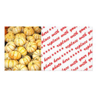 Striped White Mini Pumpkins Picture Card