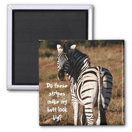 """Stripes make my butt look big?"" Zebra  magnet"