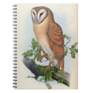 Strix Indica (Indian Screech Owl) Notebooks