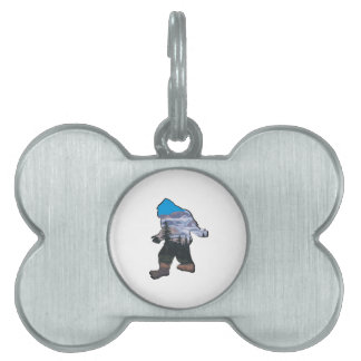 STROLL IN MOUNTAINS PET TAG