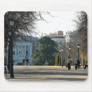 Stroll in the park of the Retirement, Madrid Mouse Pad