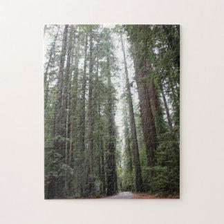 Stroll Through Redwoods Jigsaw Puzzle