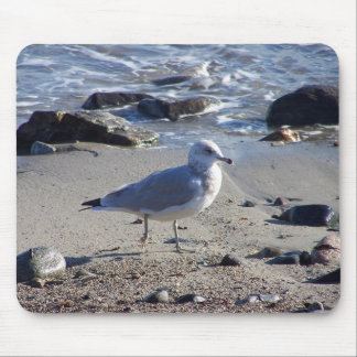 Strolling Gull Mouse Pad