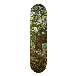 Strong And Bold Skate Board Decks