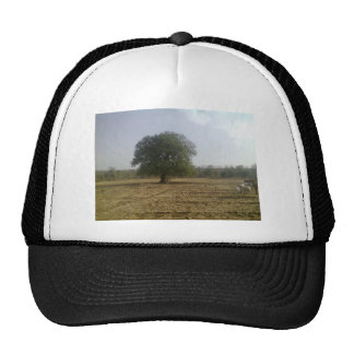 Strong Personality Hat