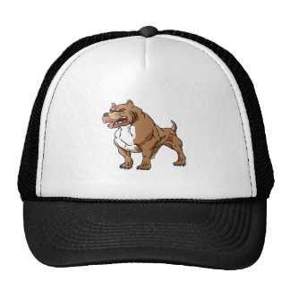strong pitbull bodybuilder. cap