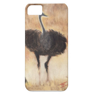 Stuart Case For The iPhone 5