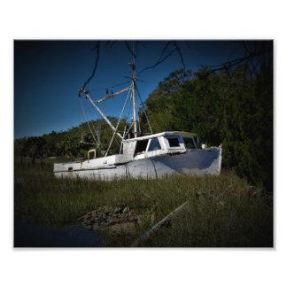 Stuck in the marsh photo print